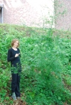 Pallin' around with a 10ft tall Poison Hemlock